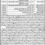 Hundreds Vacancies of Clerks & Stenographers Announced by the District & Session Judge Jhang