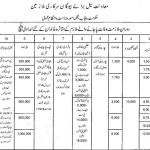 Relief Packages for the Bereaved Family of a Died Employ-Punjab Govt