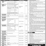 Advertisement for Educators Vacancies in Punjab