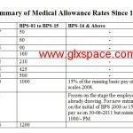 Medical Allowance Rates since 1987 for the Civil Servants