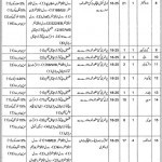 Vacancies of Class IV Employees in Health Department Vehari