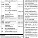 Educators Jobs 2016-Advertisement by NTS