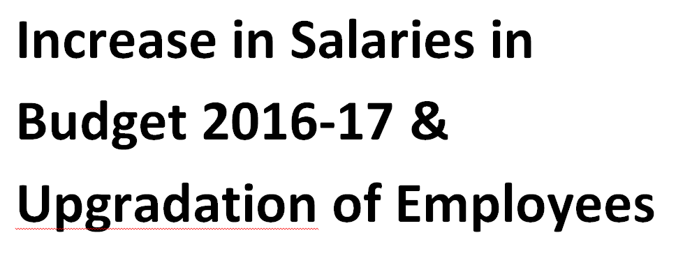 Increase in Salaries