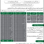 Vacancies in Punjab Police 2016 through NTS