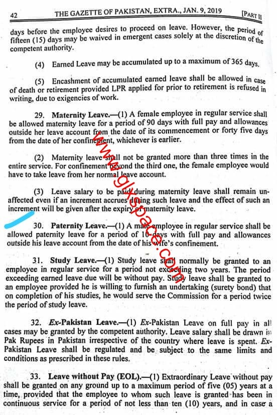 Notification of 10 Days Paternity Leave for Government Employees