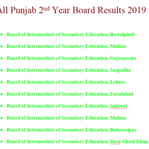 All Punjab 2nd Year Board Results 2019