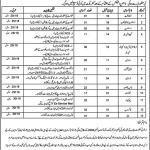 Jobs in Social Welfare & Bait-ul-Maal Department Punjab