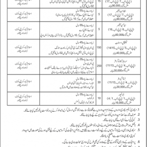 Advertisement of 480 Survey of Pakistan Jobs 2019
