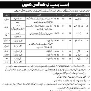 Federal Service Tribunal Jobs 2019