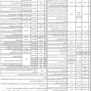 Job Opportunities in PPHI Sindh Salary 16300/- to 335,000/- PM Plus Allowances
