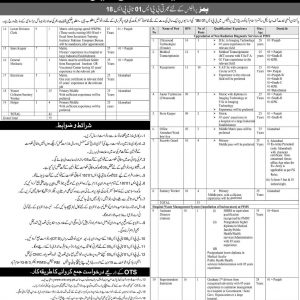 Job Opportunities in Pakistan Institute of Medical Sciences Islamabad BPS-01 to BPS-18