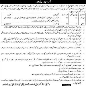 Jobs of Supervisors and Rodman in Agriculture Department Punjab