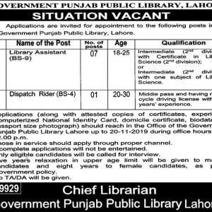 Government Punjab Public Library Jobs 2019