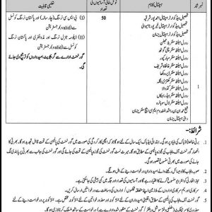 District Health Authority Bahawalpur Charge Nurses Vacancies 2019