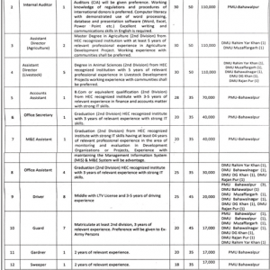 Jobs Southern Punjab Poverty Alleviation Project