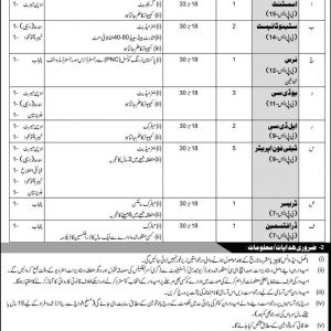 Jobs in Ministry of Defence Government of Pakistan
