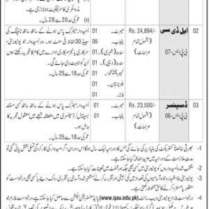 Staff Nurse, Dispenser and LDC Vacancies in Quad-e-Azam University Islamabad