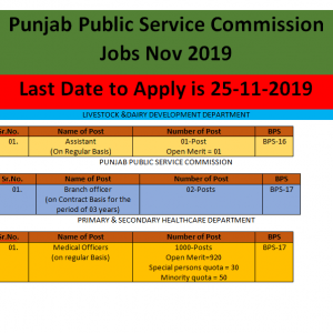 1000 Vacancies in Primary & Secondary Healthcare Department through PPSC