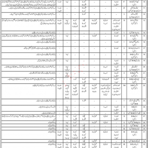 Social Welfare Department Jobs 2019 BPS-01 to BPS-15 through CTS