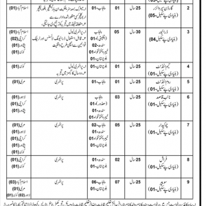 Establishment Division Staff Welfare Organization Jobs 2019