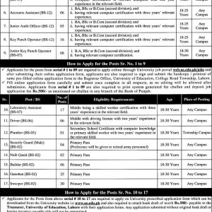 Non-Teaching Jobs in University of Education Lahore