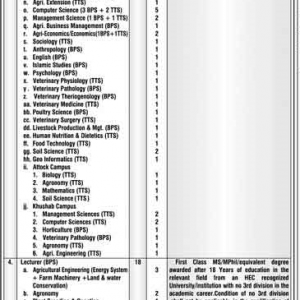 Situation Vacant Arid Agriculture University Rawalpindi 2020