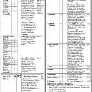 Non-Teaching & Teaching Jobs in BNB Women University Sukkur 2020