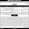 Vacancies in Elite Tribunal Punjab Revenue Authority (BPS-01 to BPS-04)
