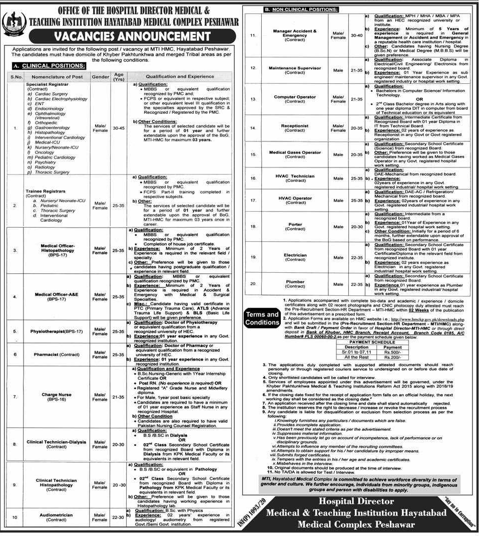 Jobs in Medical and Teaching Institution Hayatabad Medical Complex