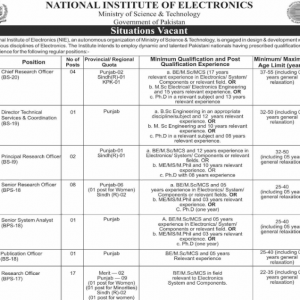 Jobs in National Institute of Electronics (NIE Jobs 2021)